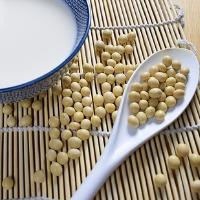 大豆と加工製品の写真